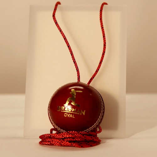 Leather Cricket Ball on String