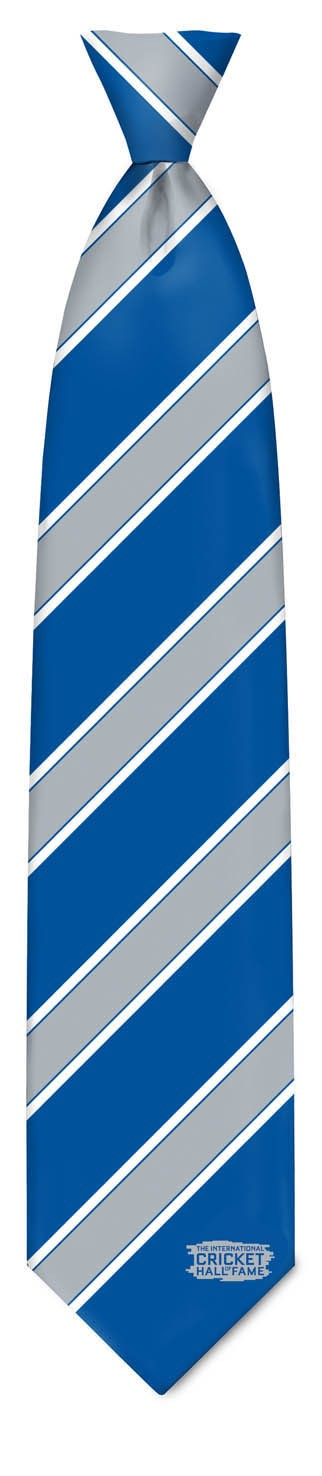 TIE - Blue Silver Silk Tie