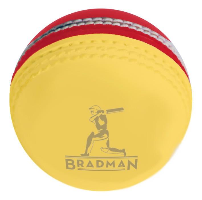 Two Tone PVC 142g Cricket BALL
