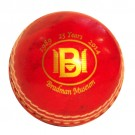 Mini Cricket Ball