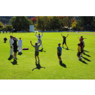 Sep Bradman Cricket Clinic 8-11yrs Week 2